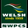 Nederlands Welsh Pony en Cob stamboek
